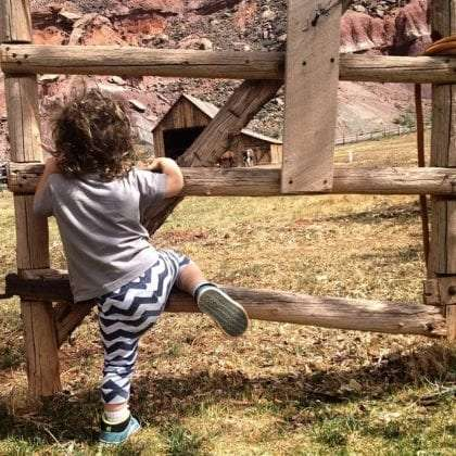 a toddler climbs a fence, horses and a barn in the distance