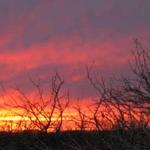 a hot pink and orange desert sunset
