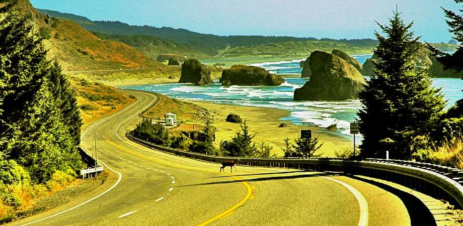 A deer crosses US Highway 101 as it winds through mountains and beaches, stacks and forest in the distance