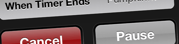 screenshot of a portion of the iPhone's Timer app