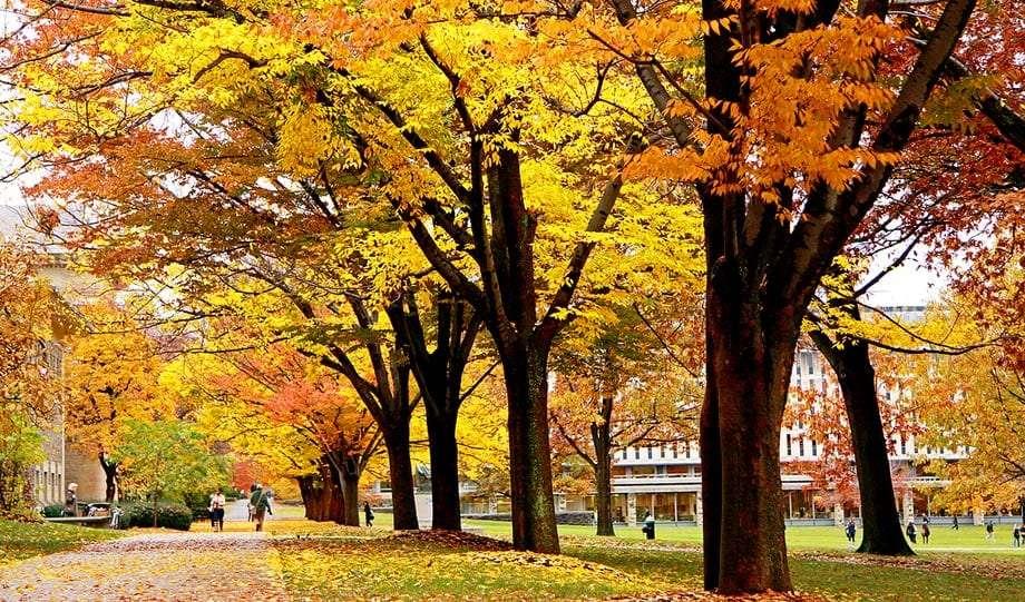 brilliant red, orange and yellow trees prove autumn on the Arts Quad of Cornell University, Ithaca New York