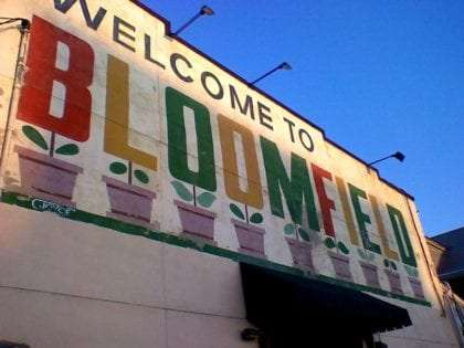 a sign which reads Welcome to Bloomfield, where each letter is painted like a potted plant