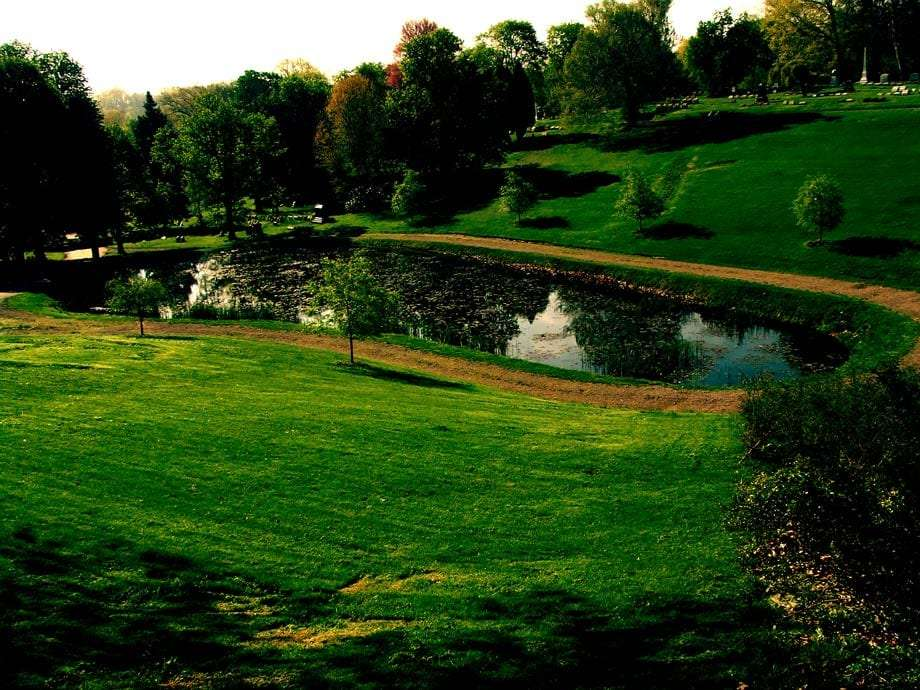 a man-made lake surrounded by a grassy field and trees in homewood cemetery