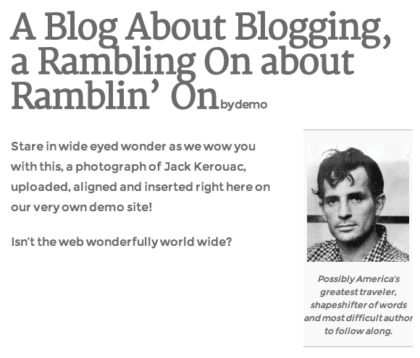 screenshot demoing an image after it's been placed in a blog post