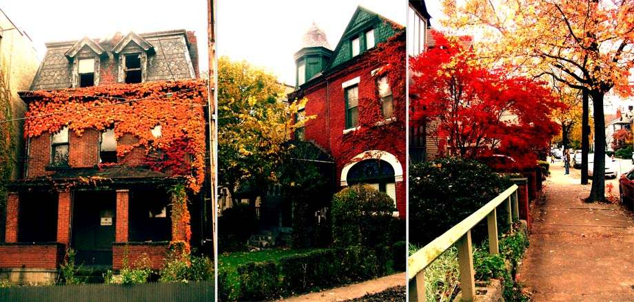 three photographs, an abandoned ivy covered house, a well kept red brick mansion, and autumn leaves turning on the streets of Shadyside Pittsburgh