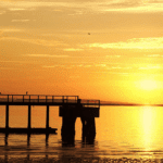 golden sunset over the bay, a dock silhouetted in the foreground