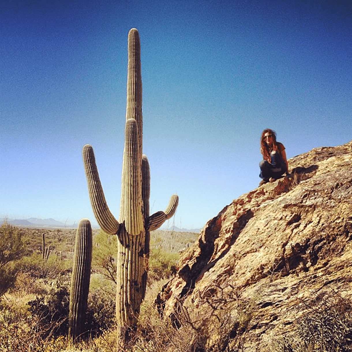 a woman crouches on a cliff beside a saguaro tree