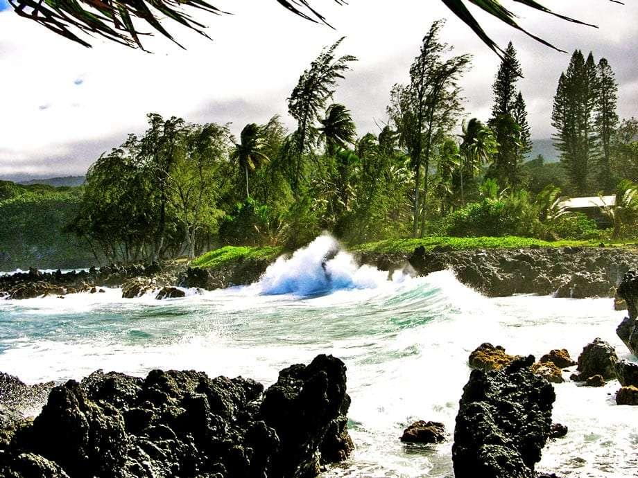 waves crash along the shores of Maui