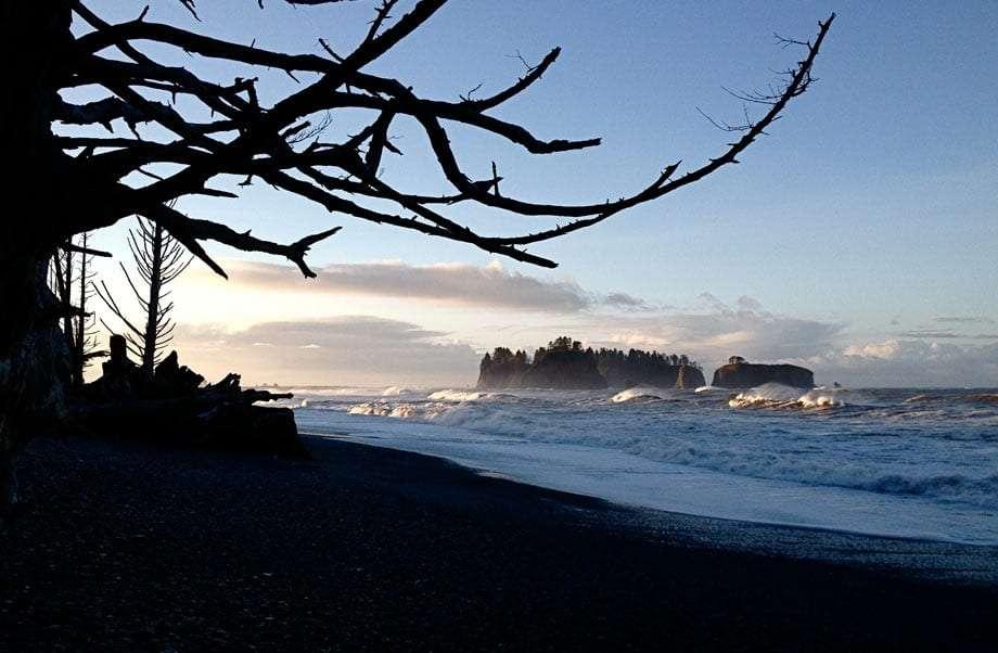 Rialto beach.... wild olympic coast..... massive drift logs, sea stacks , humanoid ..........