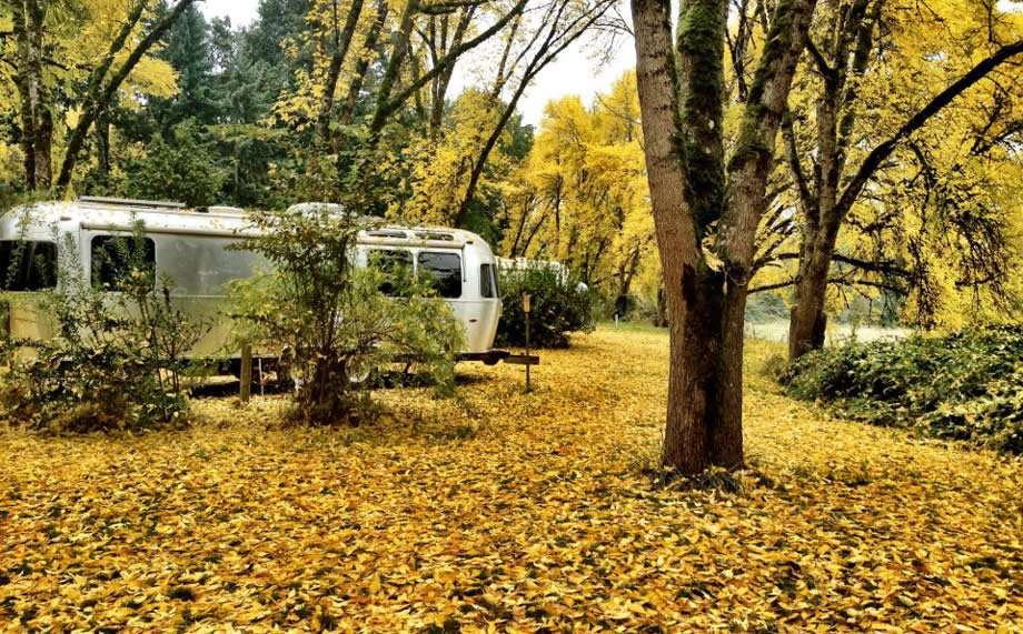 a silver travel trailer, the Airstream, parked in a forest blanketed in yellow leaves