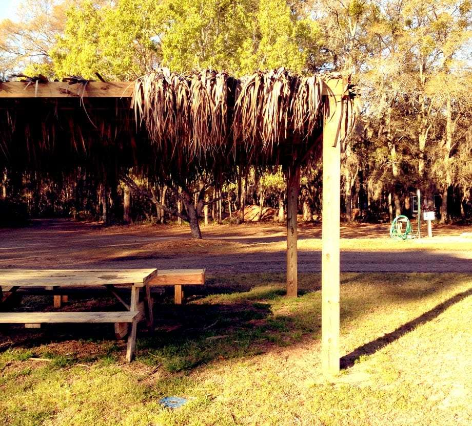 A campground on Lady Island, just east of Beaufort, filled with Spanish moss and dried palms.