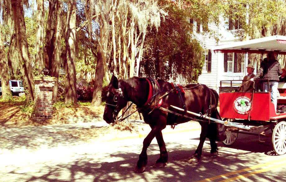 A horse drawn carriage leads visitors around the city.