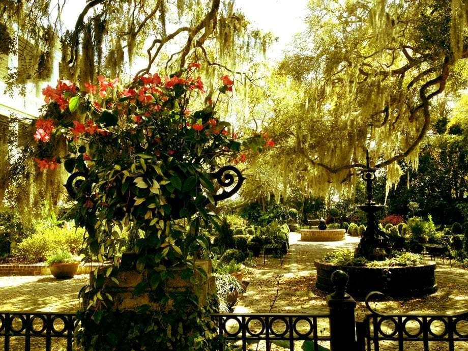 A garden fit for Gone With the Wind