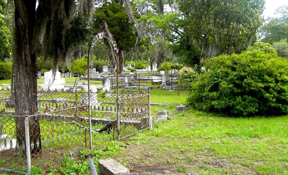 an old cemetery, kept and overgrown all at once