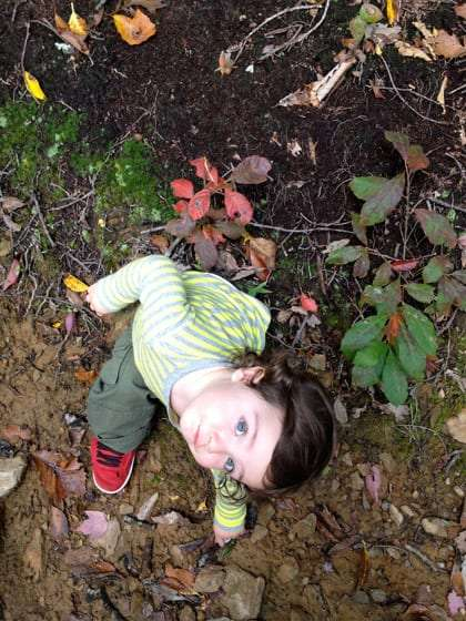 a goddamn adorable child picks up rocks on the a trail while hiking