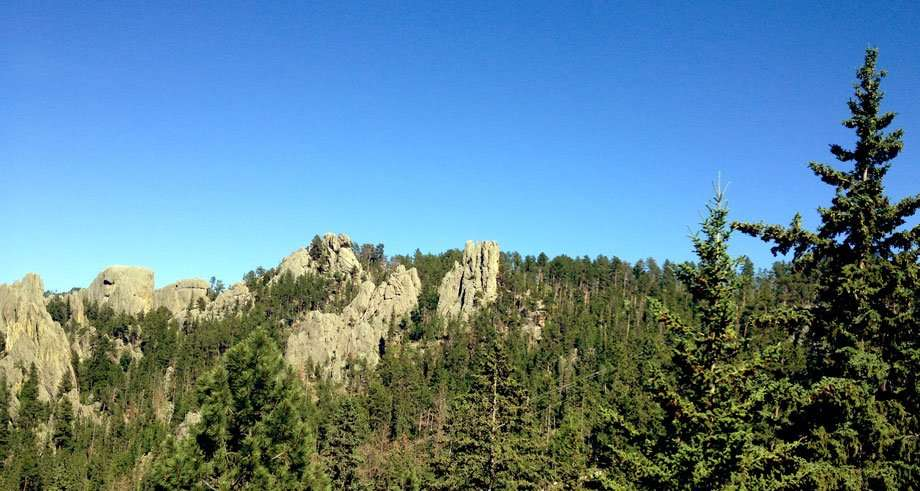 mountains and forest in the black hills