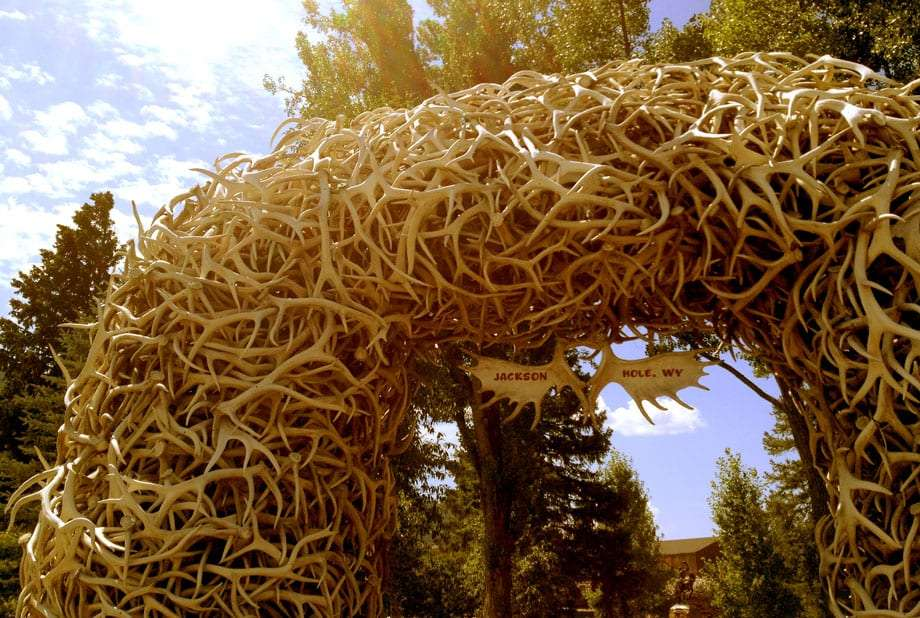 an arch made of elk antlers