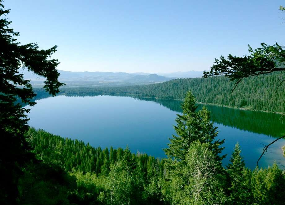 a beautiful lake surrounded by forest