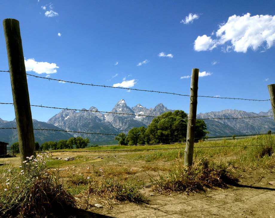 a barbed wire fence and the Tetons in the background