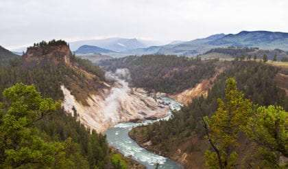 a river flowing through a valley in forested Yellowstone