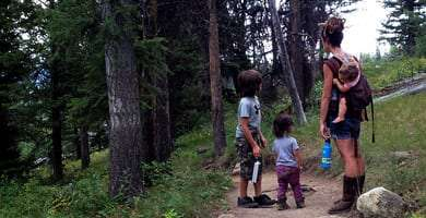 two boys hike a lush forest with their mama, a third in a carrier on her back