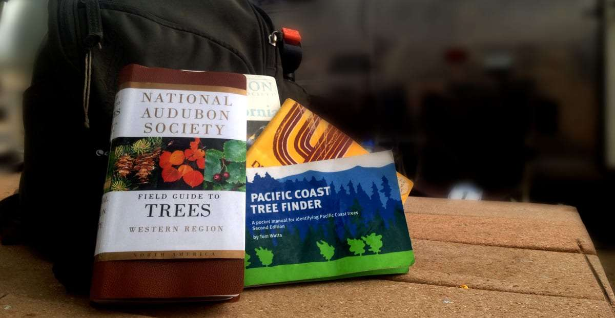 various tree identification books stacked against a green backpack