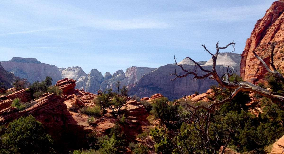 grey mountains in the distance, the foreground of pinyon pines, junipers and Utah's famous red rock