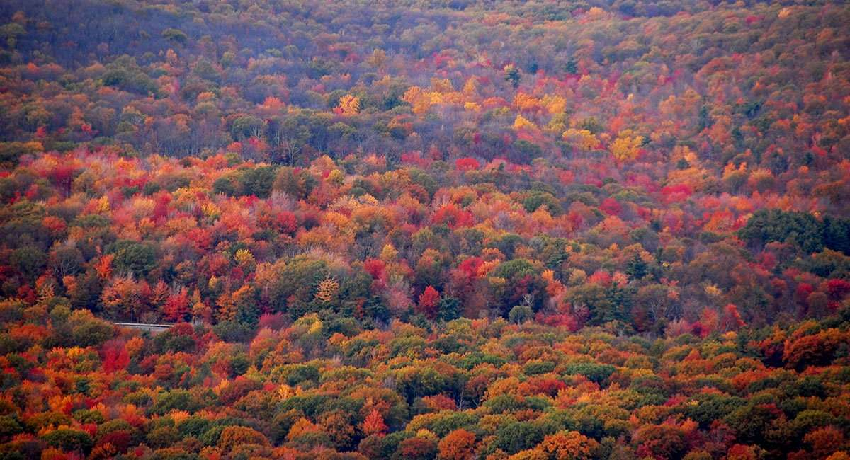 Chasing Autumn Small Towns State Parks And National