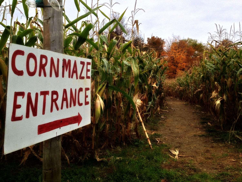 a sign reads Corn Maze Entrance