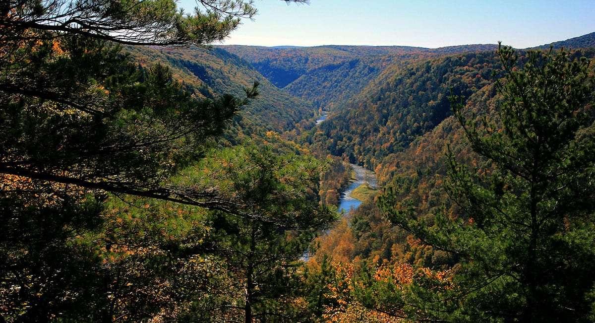 a deep gorge Vs through the mountainside, covered in autumn foliage, as a river runs through it all