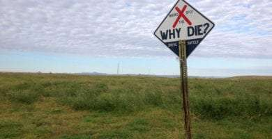 a sign in a field beneath a cottonball sky reads X marks the spot, why die?