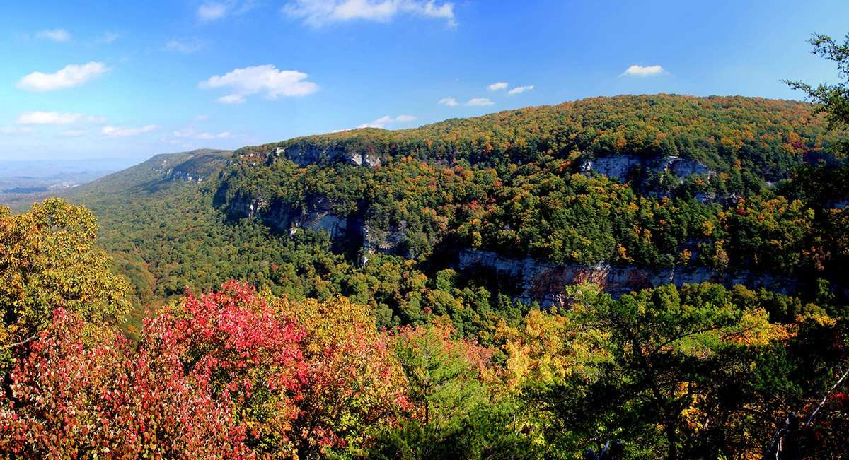the colors of autumn fill a mountainous landscape