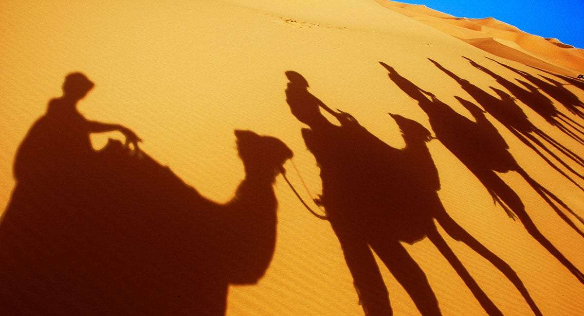 silhouettes of camels with riders as they cross the desert