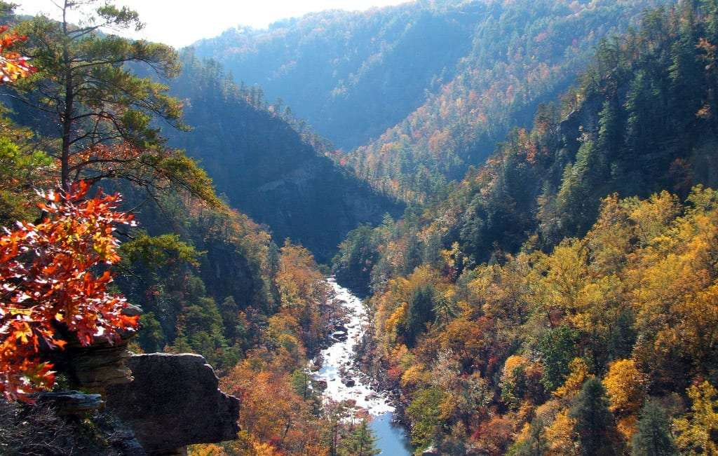 a deep crevice in the earth is home to a beautiful river, surrounded this time of year by the changing season of fall