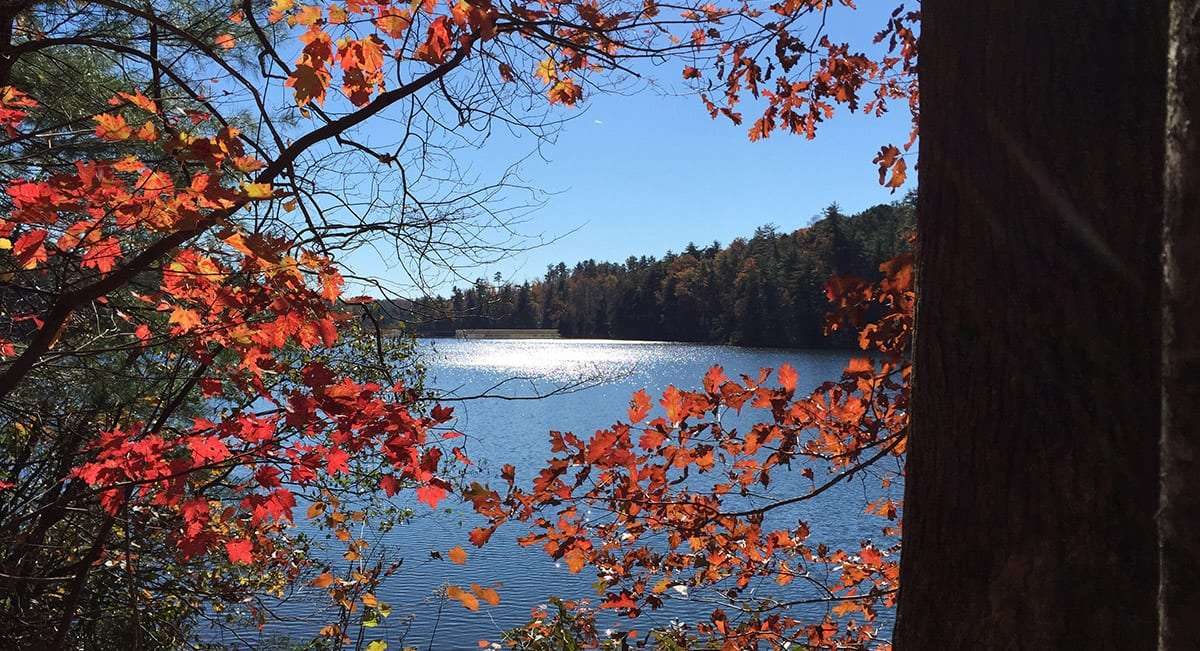 the red of autumn leaves juxtaposed against the blue of a pristine lake