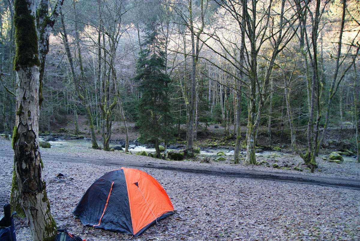 A small, bright orange tent near a beautiful, lush flowing river