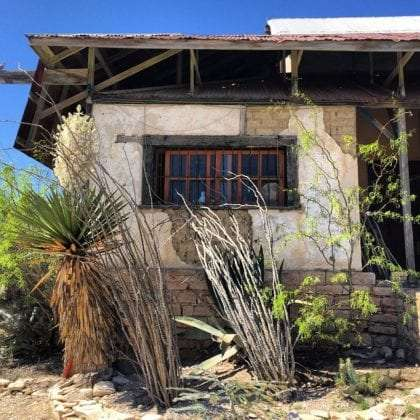 an old building in semi-ruins, a torrey yucca and ocotillos grow around it