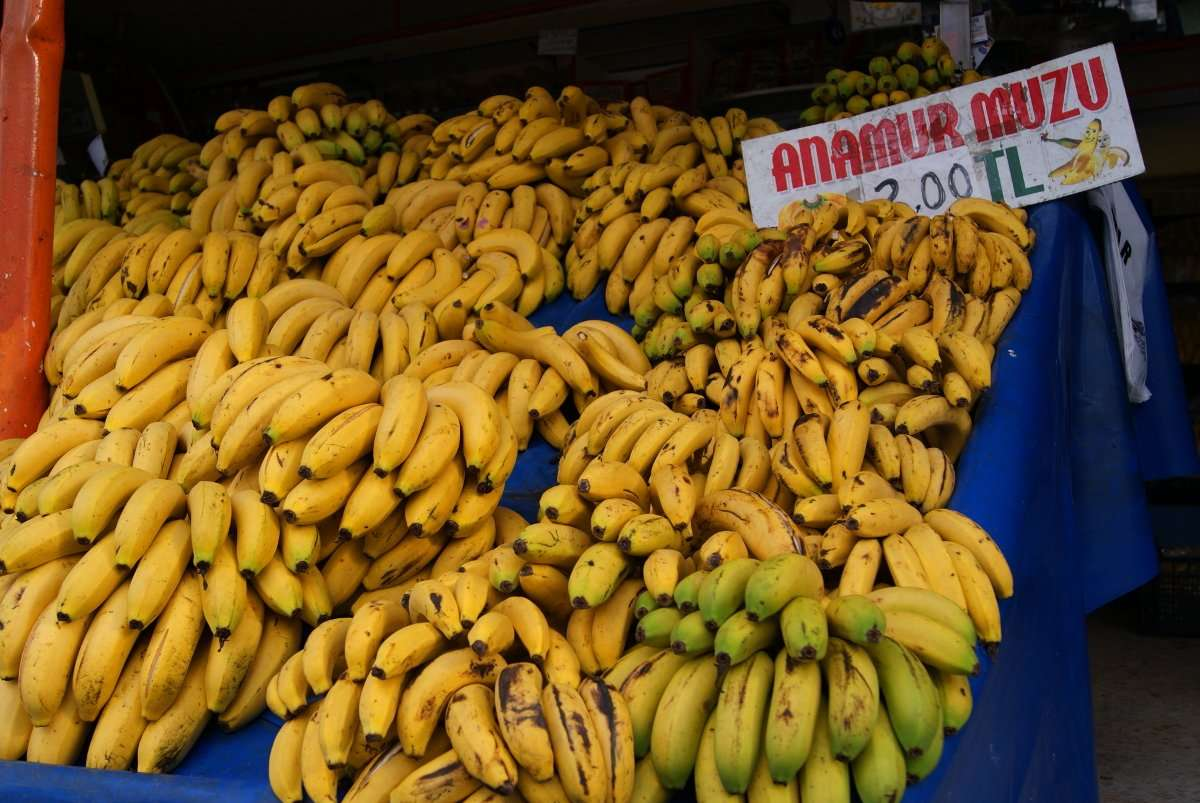 Anamur, Turkey, bananas