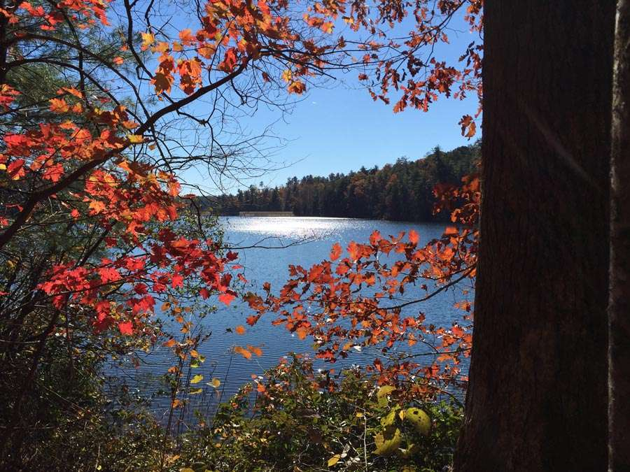 another blue lake juxtaposed against autumn foliage