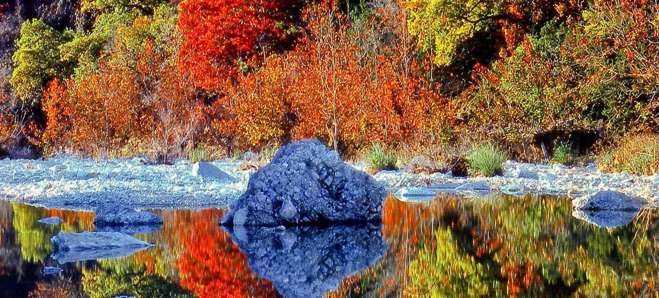 maple trees blooming autumn colors of deep red, somber orange and green-going-yellow over a reflective river