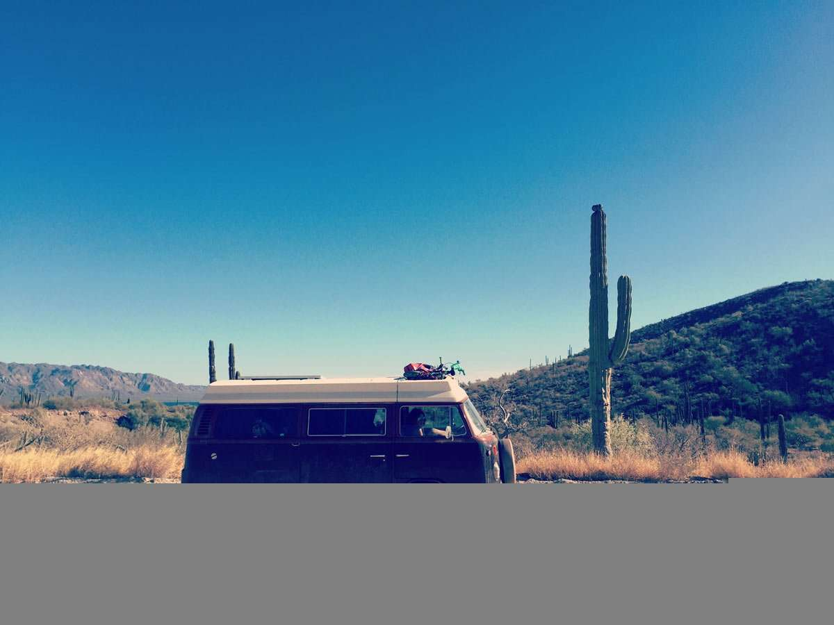 Scenes from a VW Bus: Roaming the desert.