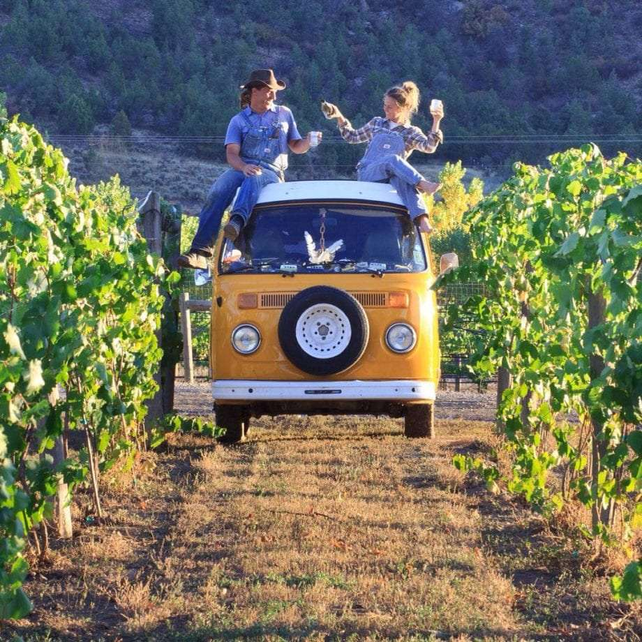 James and Rachel sit atop their VW Bus in the middle of a vineyard.