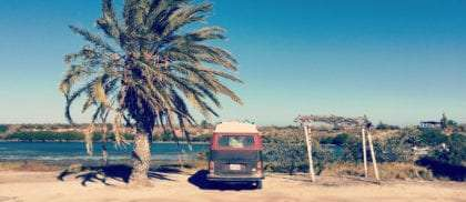 A 1978 Volkswagen Bus parked between a palm tree and a palapa in Baja California, Mexico