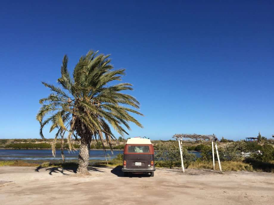 a volkswagen bus parked between a rickety palapa and a date palm in Baja Mexico