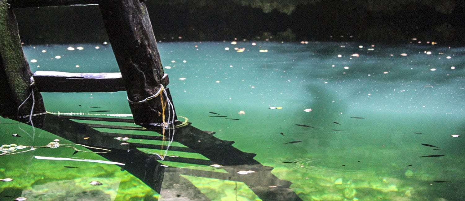 a ladder leads to a cenote in Quintana Roo