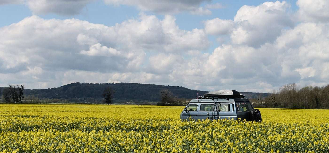 a 1987 Vanagon Syncro in a field of yellow flowers