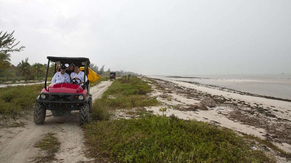 a golf cart drives along a sandy path near the beach