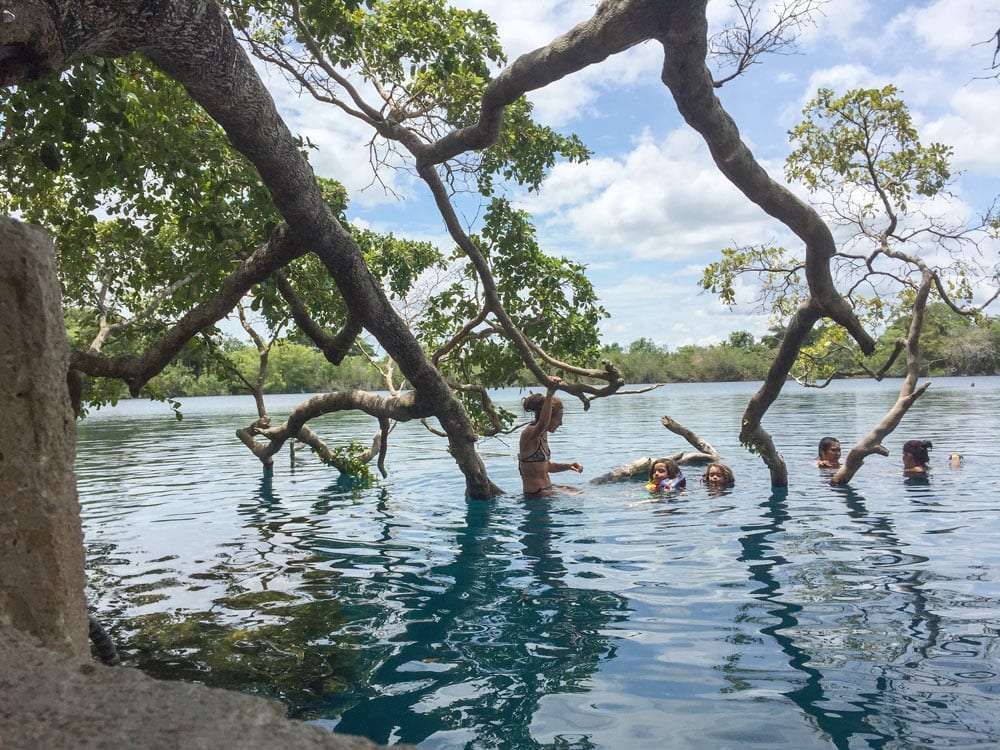 a family swims in a cenote that's not in a cave