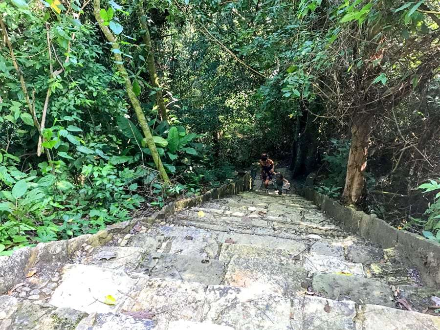 a mom and her son climb the steep stairs to the ruins at Palenque National Park