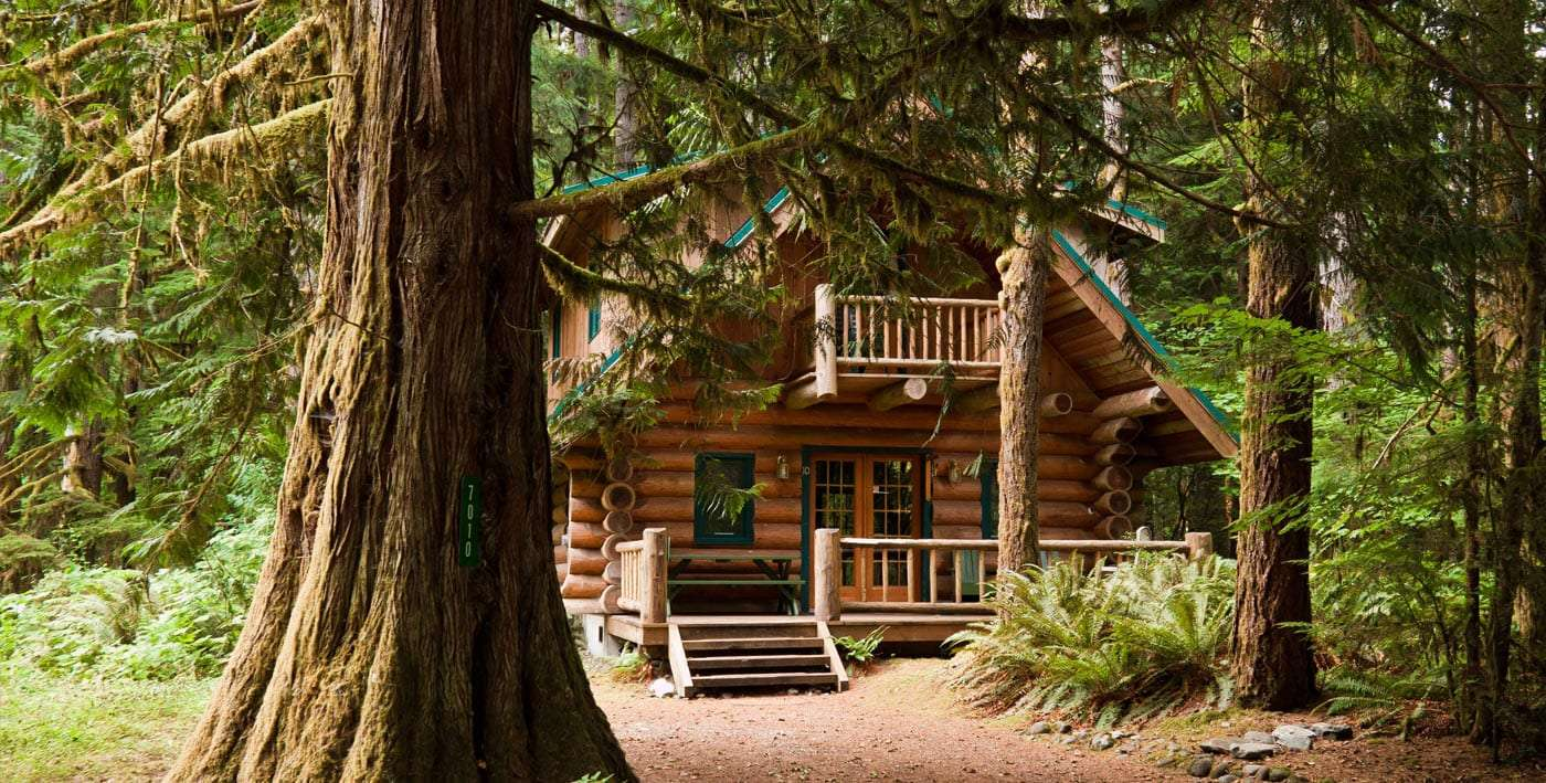 a cabin in the forest near glacier, washington